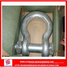 High Quality Rigging Hardware Shackle (Screw Pin Anchor Shackle G-209)