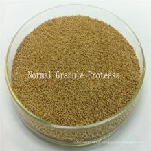 Proteasa alcalina basada en cepas calificada