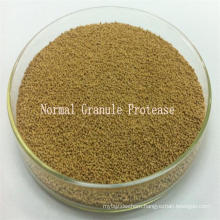 Qualified Strain Based Alkaline Protease