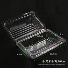 Gesundheit Kunststoff Clamshell Lebensmittel Container-Box (klar PP Verpackung)