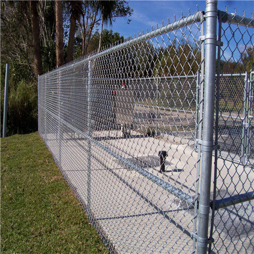 chain_link_fence
