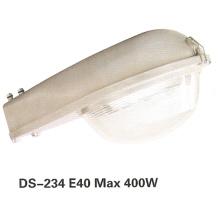 Уличный свет (DS-234)