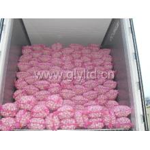 2015 New Chinese White Garlic (4.5cm and up)