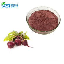 Organic Betanin Red Beet Juice Concentrate Powder