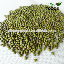 Green Beens in China