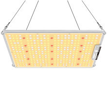 100W Square LED Grow Light
