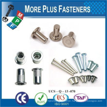 Made In Taiwan Standard Non-Standard Custom OEM Customize Rivet