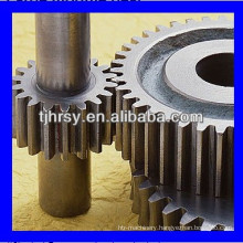 Spur gear shaft