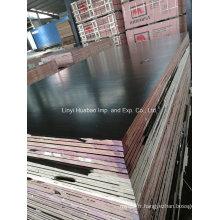 A / A Grade WBP Glue Film face au contreplaqué pour la construction (HB1601)