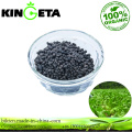 Granular Organic Fertilizer NPK and 45% Orgniac
