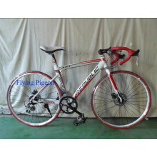 Popular Road Bike, Alloy 6061 Frame Racing Bicycles (FP-RB-08)