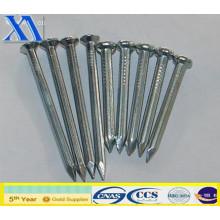Clous en fil poli avec une bonne qualité (XA-CN007)
