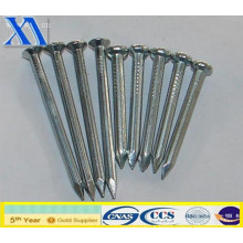 Polished Wire Nail with Good Quality (XA-CN007)