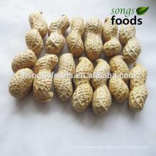 Cashew Nut/Chinese Raw Type Groundnut Or Peanut