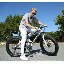 Bicicleta gorda / bici gorda de la playa / bici gorda de la arena / bici gorda / bicicleta T / bici gorda de la nieve