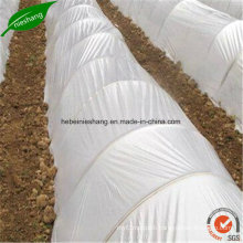 200 Micron Greenhouse Film Clear Greenhouse PE Cover Film