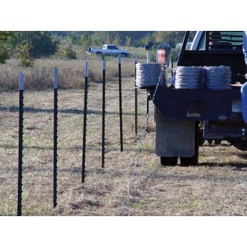 Metal wholesale galvanized cheap fence t posts