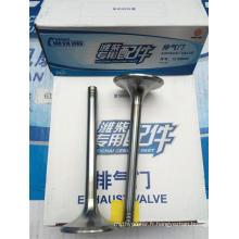 Weichai Engine Deutz 226b Soupape d'échappement 12159606