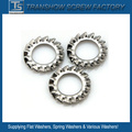 M6-M20 External Tooth Lock Washer