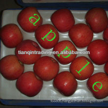 Fuji apple supplier