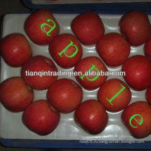 Фудзи яблочный поставщик