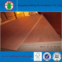 Hardwood Core Bintangor Veneer Plywood