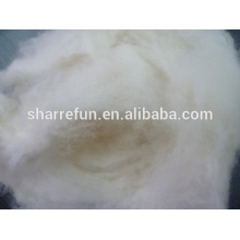 Dehaired y Carded Lamb Wool White 16.5mic / 28-30mm