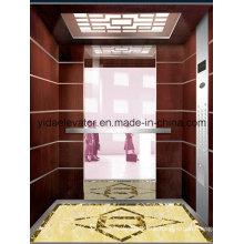 Passenger Elevator mit gearless Traktionsmaschine, Support Professional Sevice (JQ-B016)