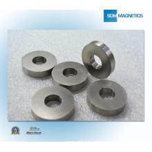 China Permanent Magnet