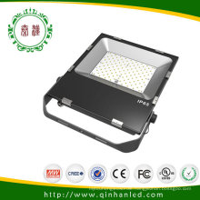 Unique Different High Quality IP65 100W LED Flood Light (QH-FLTG-100W)