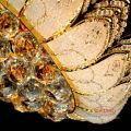 Venta caliente de oro antiguo de lujo araña de cristal para la sala de estar LT-70103