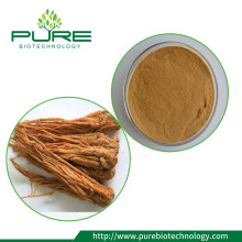 10: 1 Natural Angelica root extraktpulver