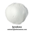 Broad Spectrum Contact Fungicide Iprodione