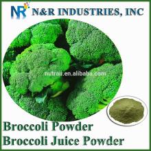 Polvo brócoli puro de brócoli brote 80mesh a 200mesh