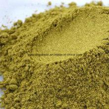 Polvo de semillas de comino