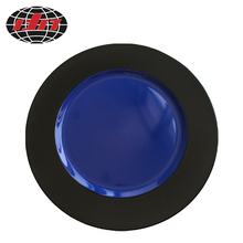 Black and Blue Plastic Plate