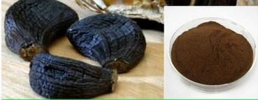 black garlic (86)