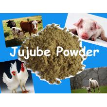 Alimentação Animal - Jujuba Em Pó com Preço Competitivo e Alta Qualidade