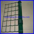 High Qulity PVC Zaun