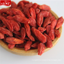 Hot sale free shipping Best quality wholesale fruit goji berry