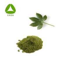 Échantillon gratuit de gypenoside 98% d'extrait de Gynostemma de poudre de fines herbes