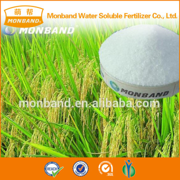 Monband Powder 100% fertilizante soluble en agua MAP 12-61-0