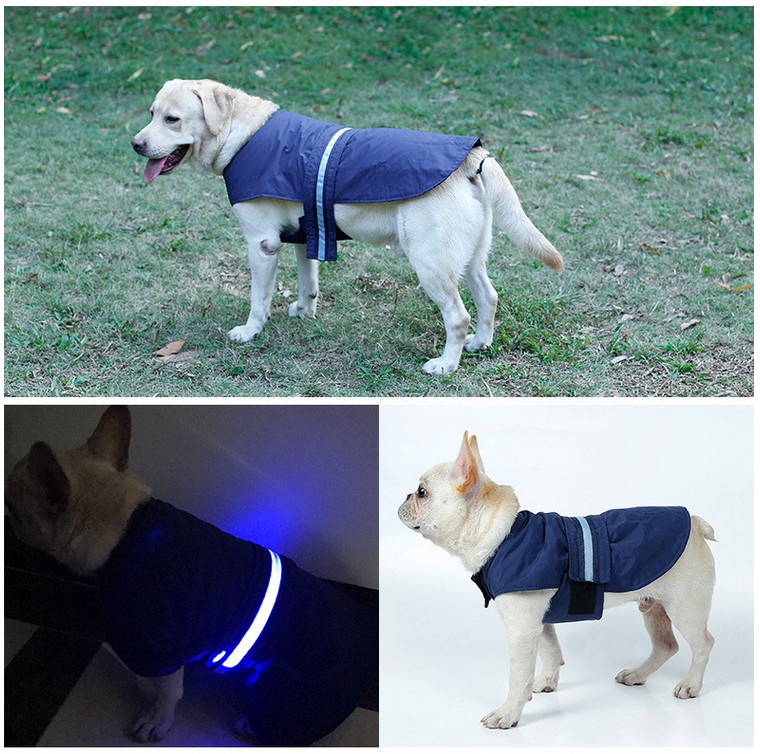 dog LED safty clothing