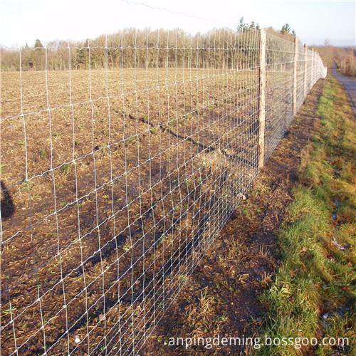 field fence 5