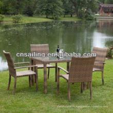 Вся погоду Wicker Высококачественная чугунная садовая мебель Столовая мебель