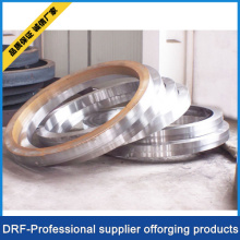 Stainless Steel Ring Forging/ Forged