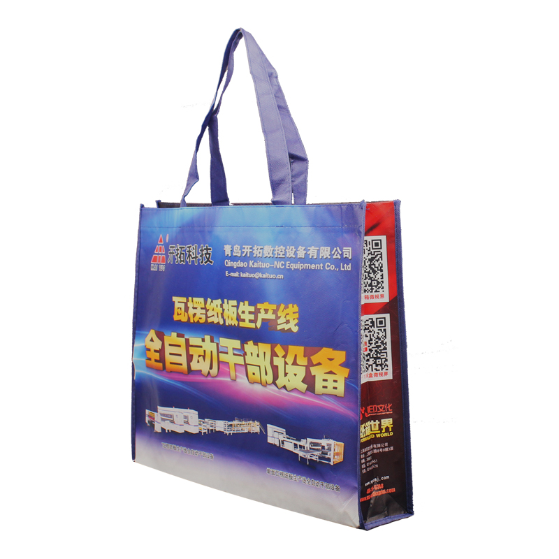 Colorful Non Woven Gift Bag