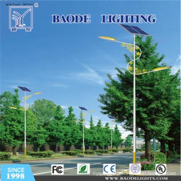 Preço competitivo de 6m 30W para a luz de rua solar da venda (bdtyn-a1)