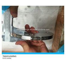 Acero inoxidable Sans1123 Sudáfrica Placa estándar Brida de acero
