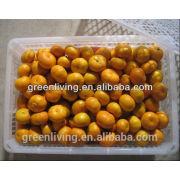 Fruits à l'orange douce à l'orange mandarine